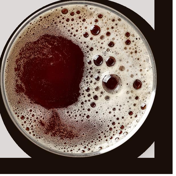 http://razbeerbriga.rs/wp-content/uploads/2017/05/beer_transparent.png